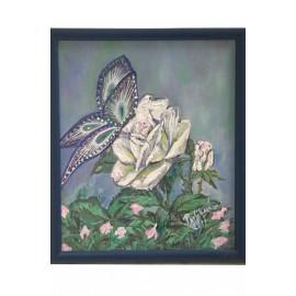 Biela ruža - ručne maľovaný obraz