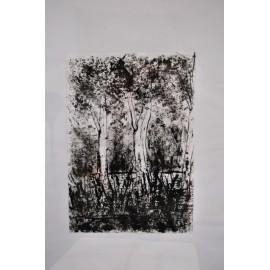 Obraz - Tuš - Ticho lesa - Bc. Mária Vasiľová