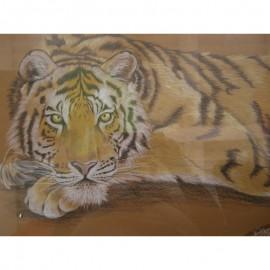 Natália Hirková - Tiger