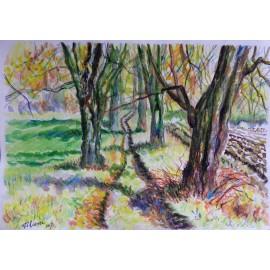 Obraz - Akvarel, pastel -Lipová aleja - Mgr. Viliam Švirk