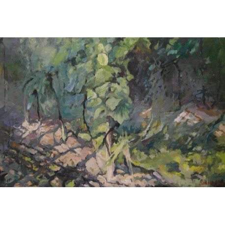 Obraz - Vinohrad